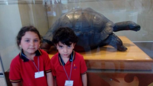 Paseo museo Pre Kinder 2018 (12)