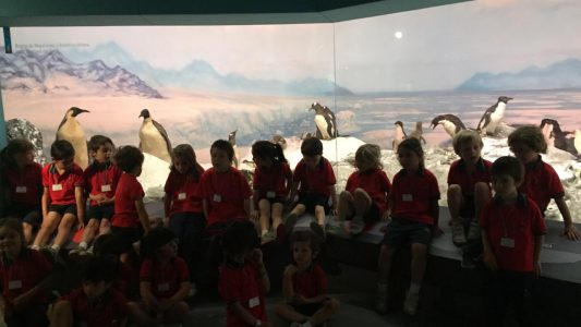 Paseo museo Pre Kinder 2018 (3)